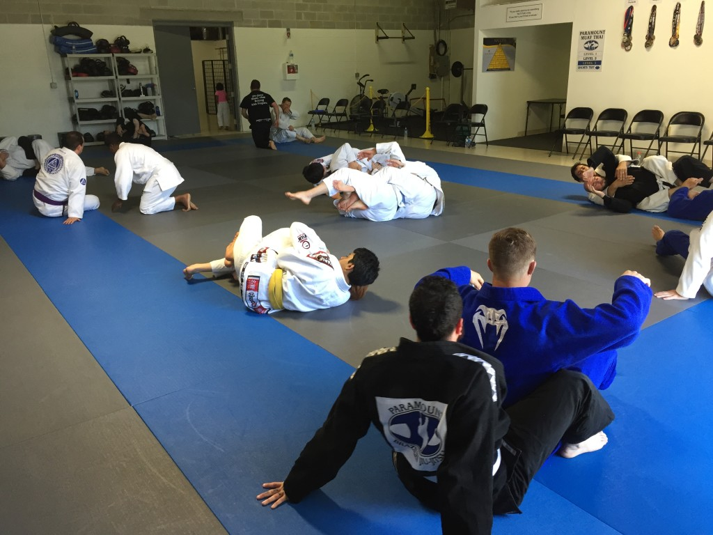Typical BJJ Basics Class